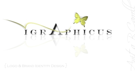 Brand Identity Design by Anita B. Carroll - anita@race-point.com