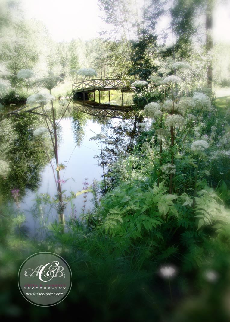 Design & Photography by Anita B. Carroll