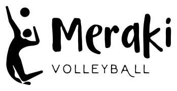THE BEFORE Meraki Logo: Original (Not my creation.)